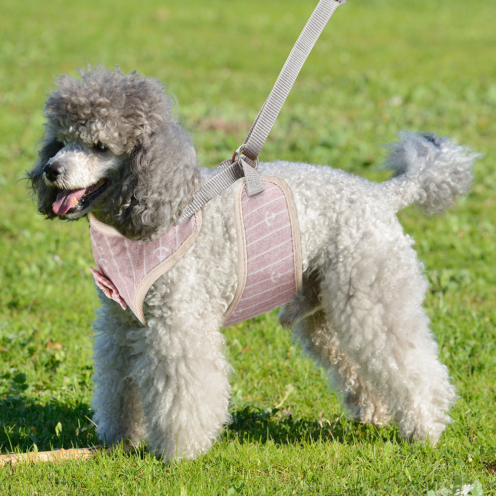 New-Small-Large-Dog-Soft-Adjustable-Harness-Pet-Walk-Out-Hand-Strap-Vest-Collar thumbnail 42