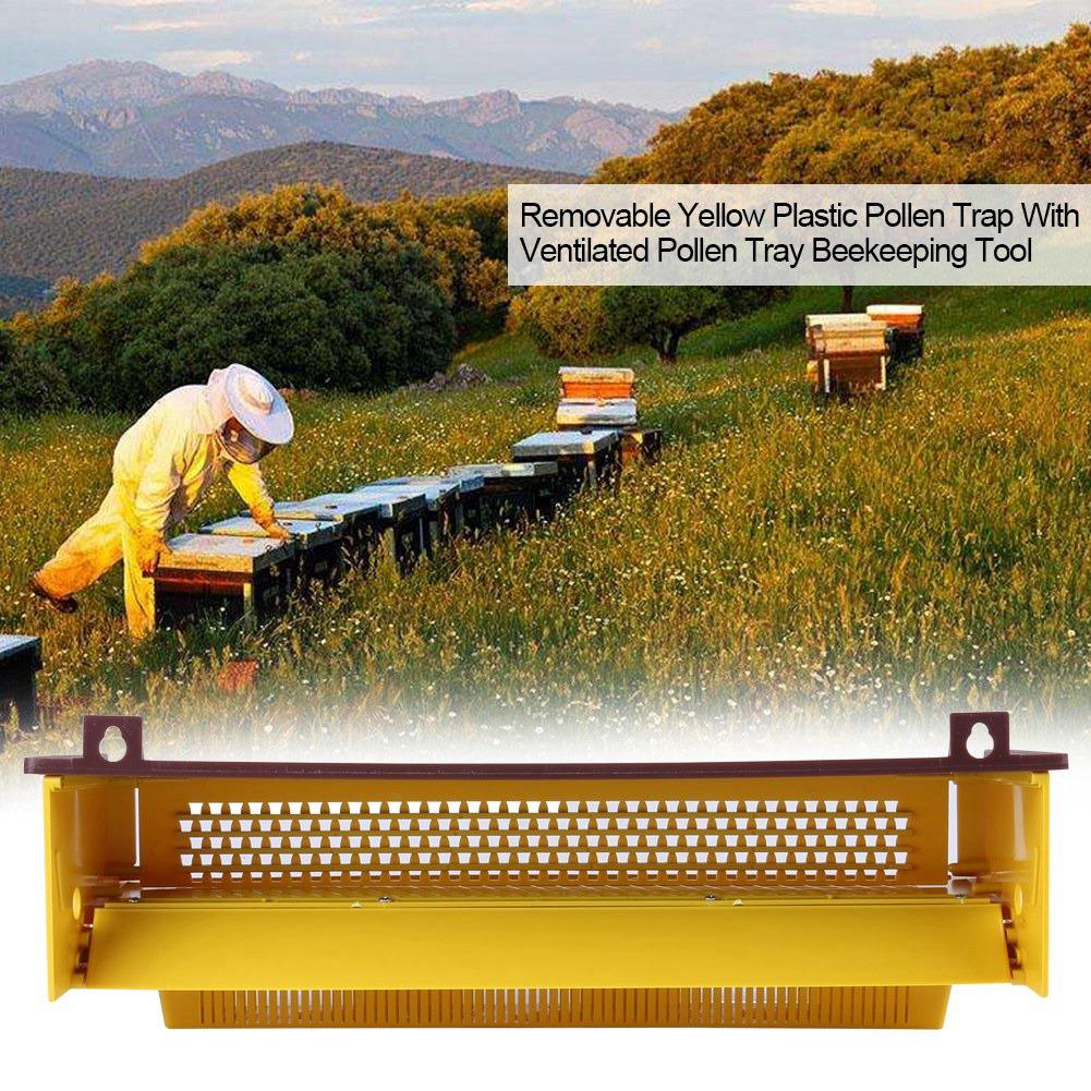 Removable Piège à Pollen Collecteur de Pollen en Plastique Plateau Pollen Outil