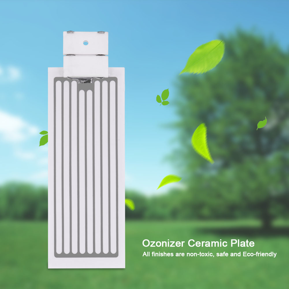 Ceramic-Plate-With-Ceramic-Base-For-10000-Hours-3-5g-5g-10g-Ozone-Generator-New thumbnail 20