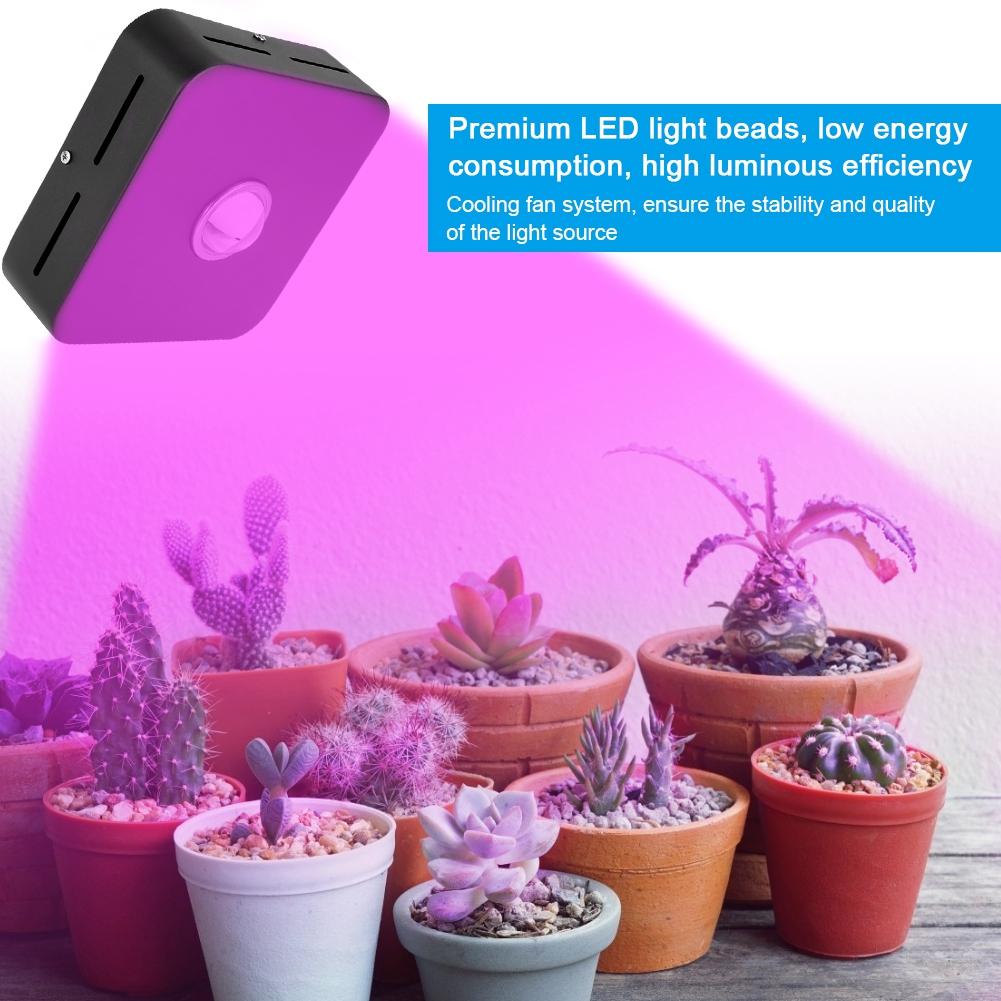 200W-10000LM-Full-Spectrum-COB-LED-Full-Spectrum-Grow-Light-Lamp-for-Hydro-Plant miniature 15