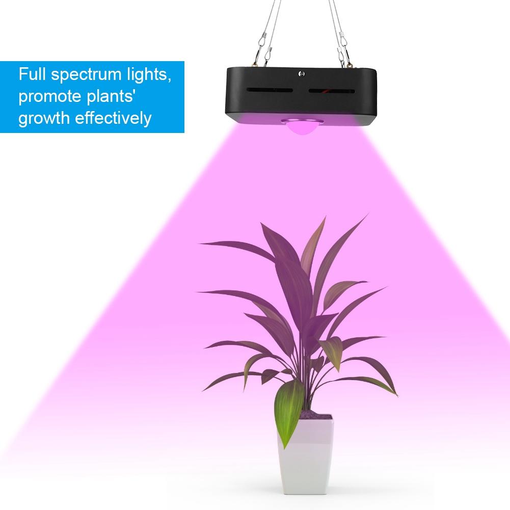 200W-10000LM-Full-Spectrum-COB-LED-Full-Spectrum-Grow-Light-Lamp-for-Hydro-Plant miniature 26