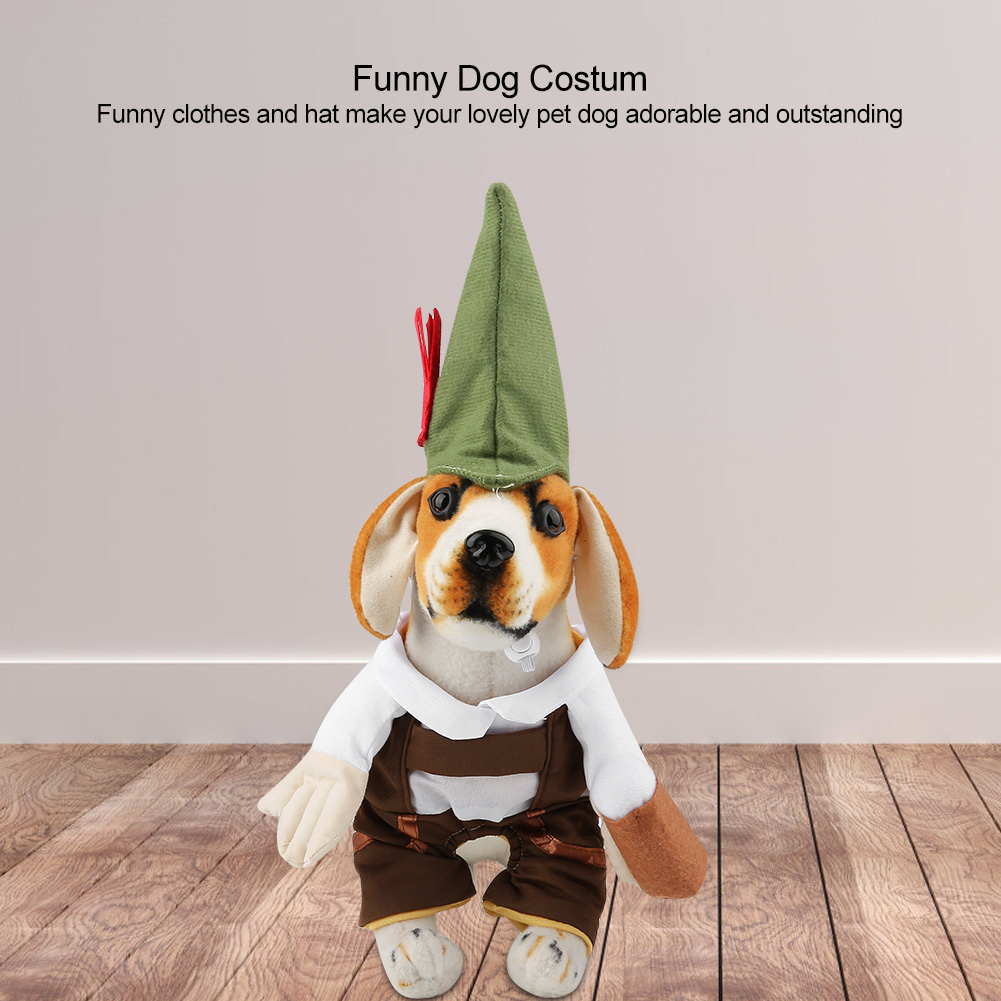 Dog Top Hat How To Make Cheap Party Theme Birthday Hats For