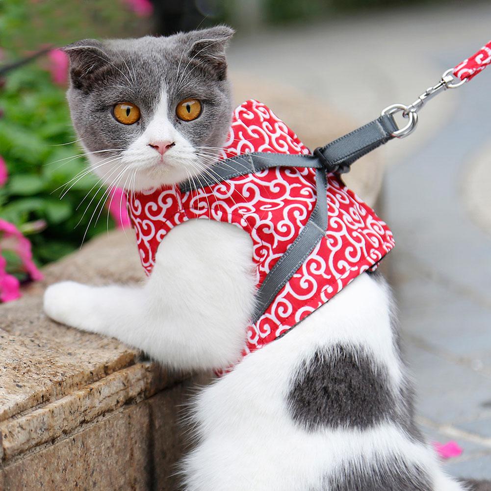 Escape-Proof-Cat-Harness-Padded-Vest-Leash-Adjustable-Soft-Mesh-for-Cat-Walking thumbnail 13