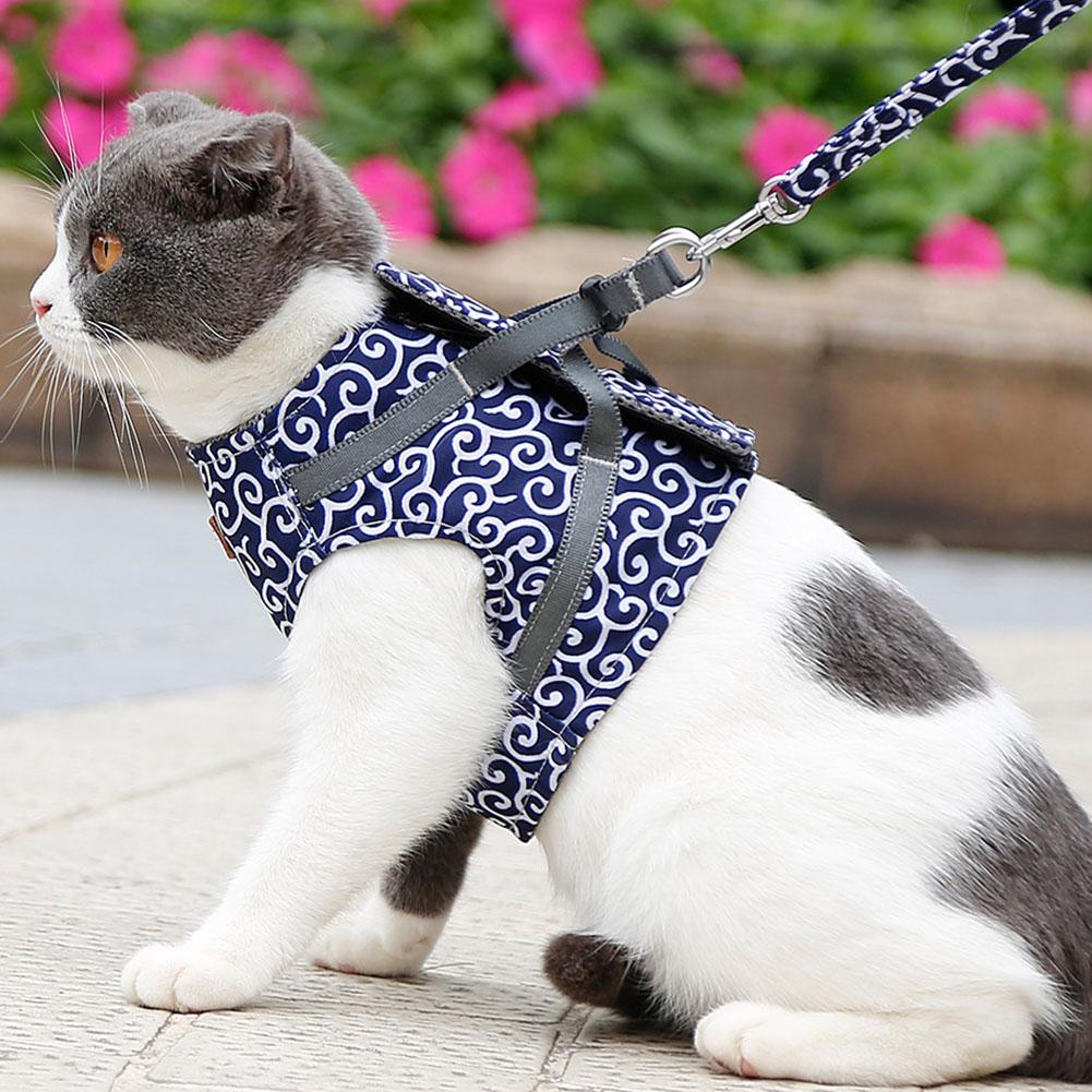 Escape-Proof-Cat-Harness-Padded-Vest-Leash-Adjustable-Soft-Mesh-for-Cat-Walking thumbnail 19