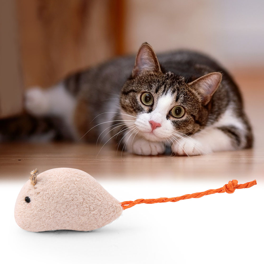 Multi-Funny-Pet-Cat-Kitten-Toy-Mouse-Teaser-Wand-Feather-Rod-Cat-Play-Toys-Lot miniature 33