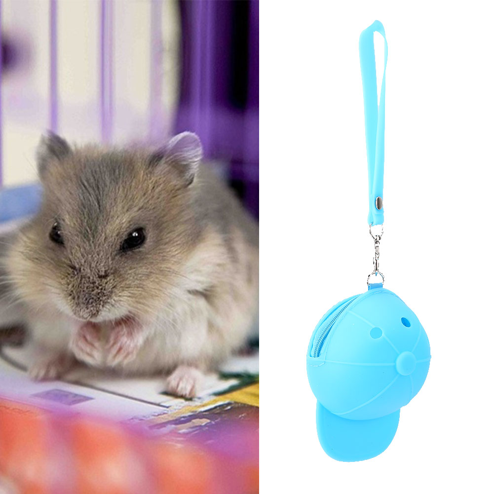 Hot-Pet-Travel-Bag-Outdoor-Portable-Hamster-Carrier-Rat-Small-Animal-Carrier thumbnail 20