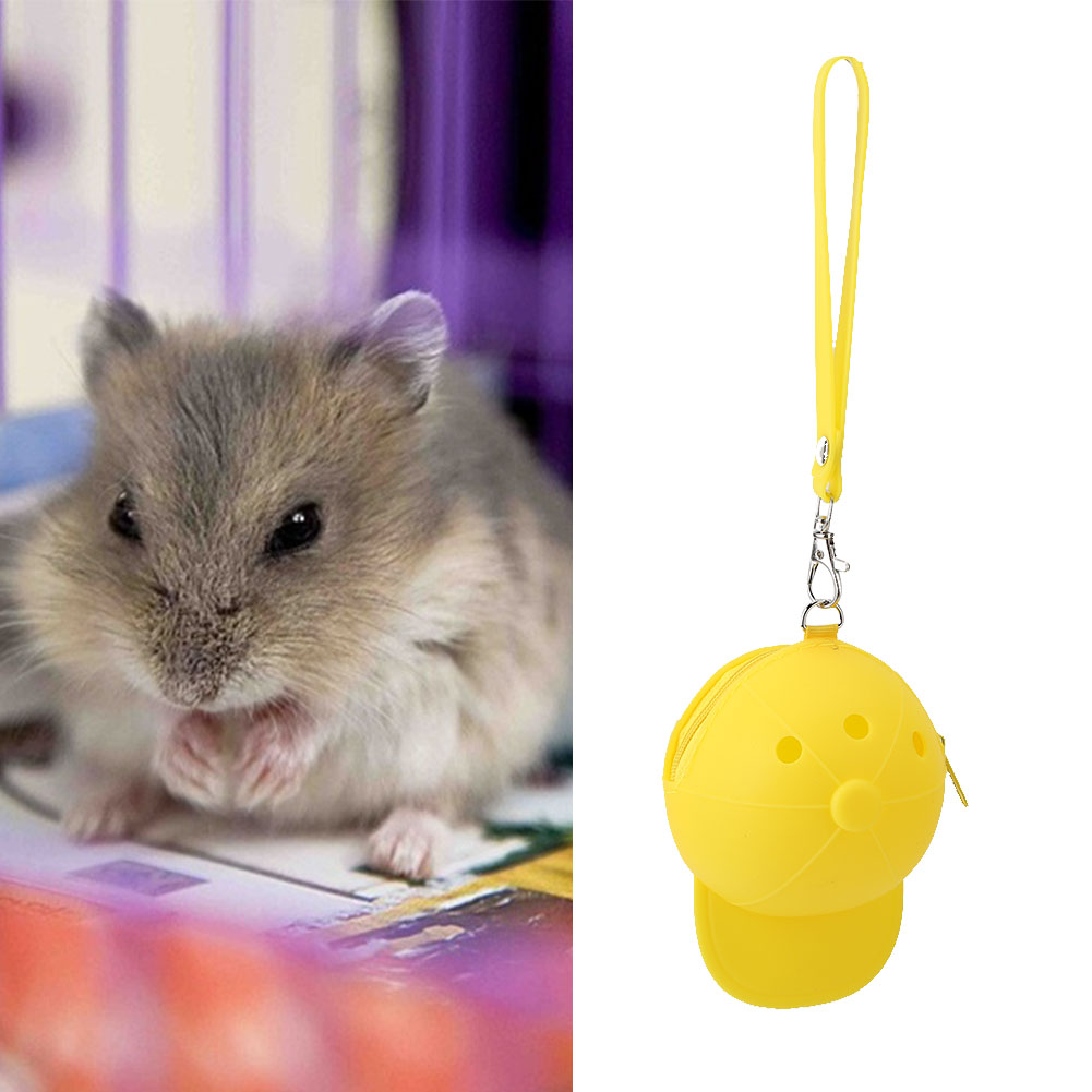 Hot-Pet-Travel-Bag-Outdoor-Portable-Hamster-Carrier-Rat-Small-Animal-Carrier thumbnail 23