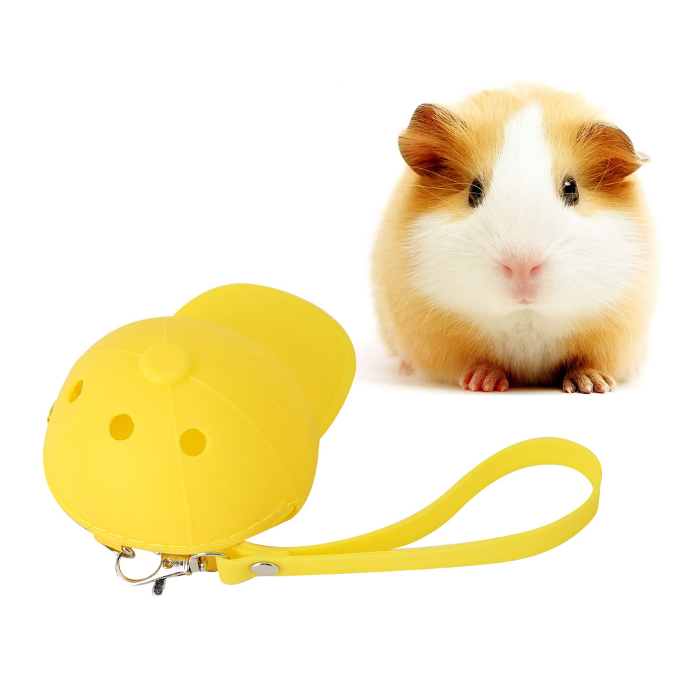 Hot-Pet-Travel-Bag-Outdoor-Portable-Hamster-Carrier-Rat-Small-Animal-Carrier thumbnail 24