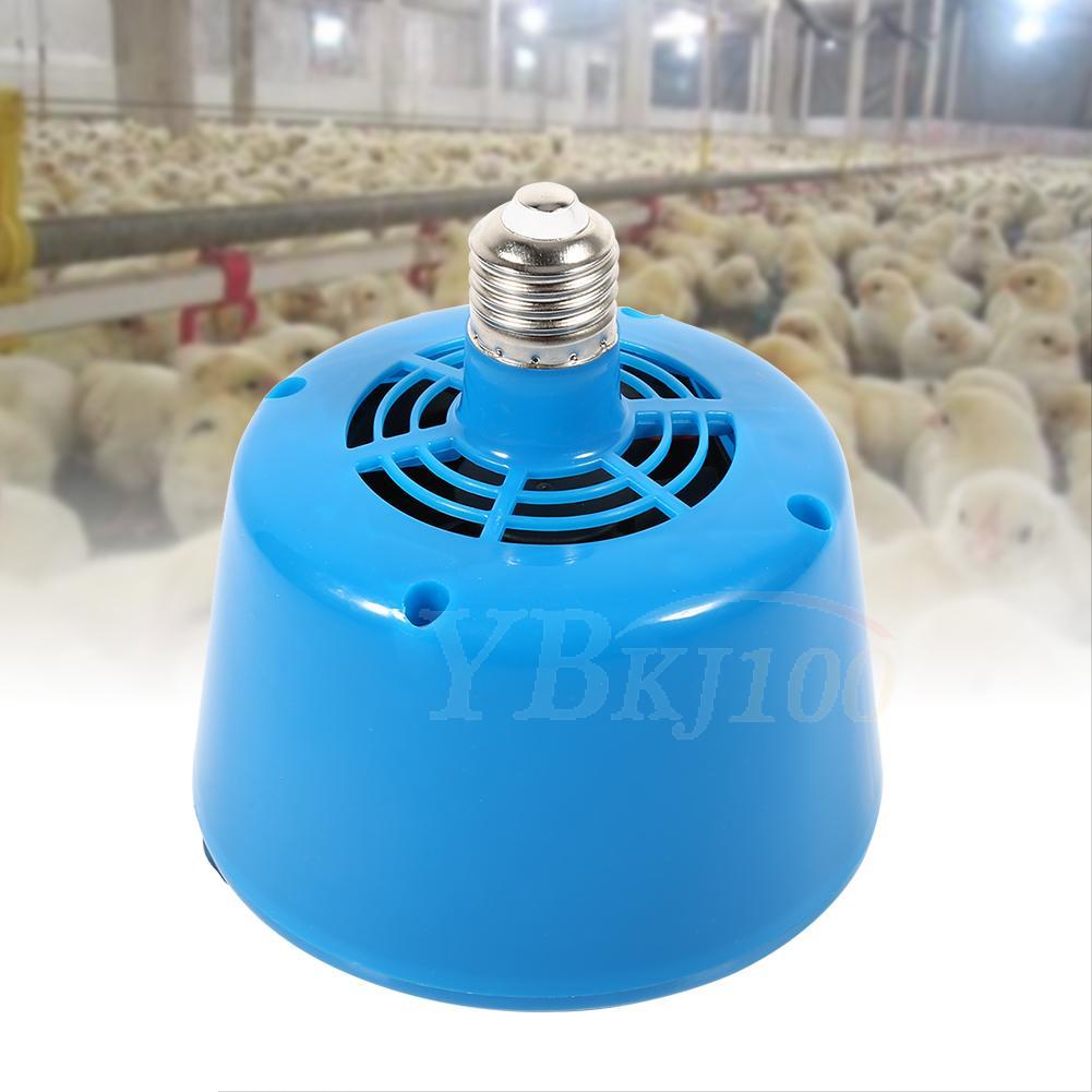 220v Blue Poultry Heat Lamp Bulb Warming Light For Brooder Piglets Chicken Pet 957881487027 Ebay