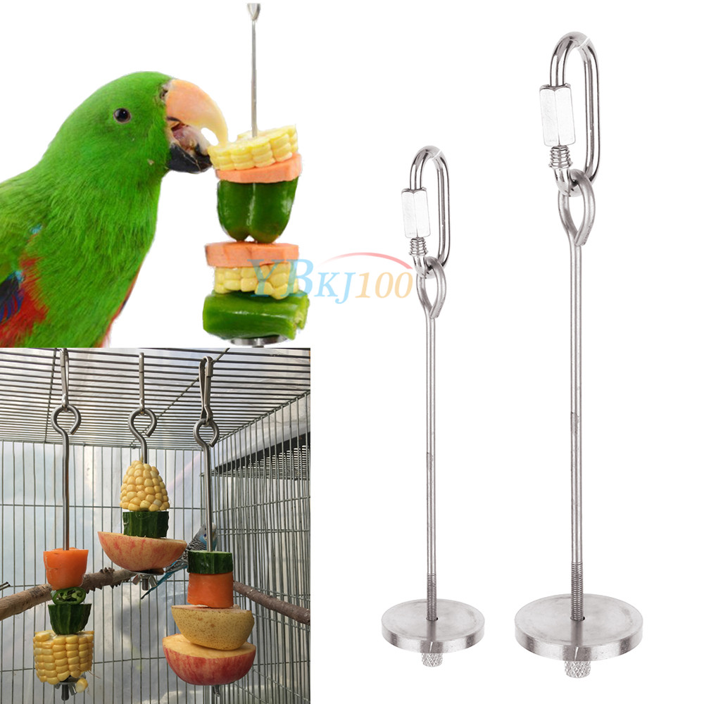 Stainless Steel Parrot Fruit Vegetable Stick Holder WoYous Bird Fruit Skewer and Bird Feeder Bowl Set Parrot Feeders Water Cage Bowls with Clamp Holder for Cockatiel Conure Parakeet Macaw