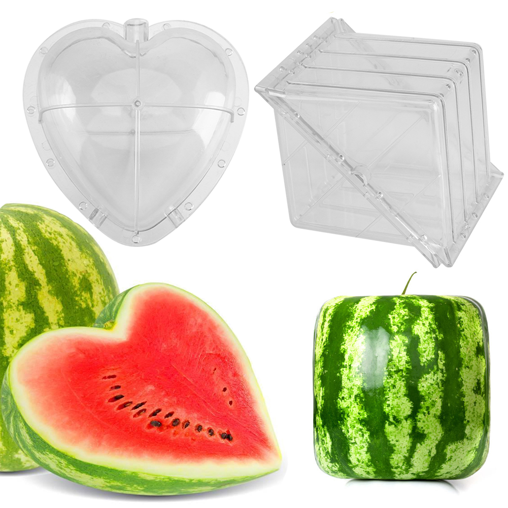 Square Watermelons And Apples Heart Or: Square/Heart Shape Watermelon Pumpkin Growing Mold Garden