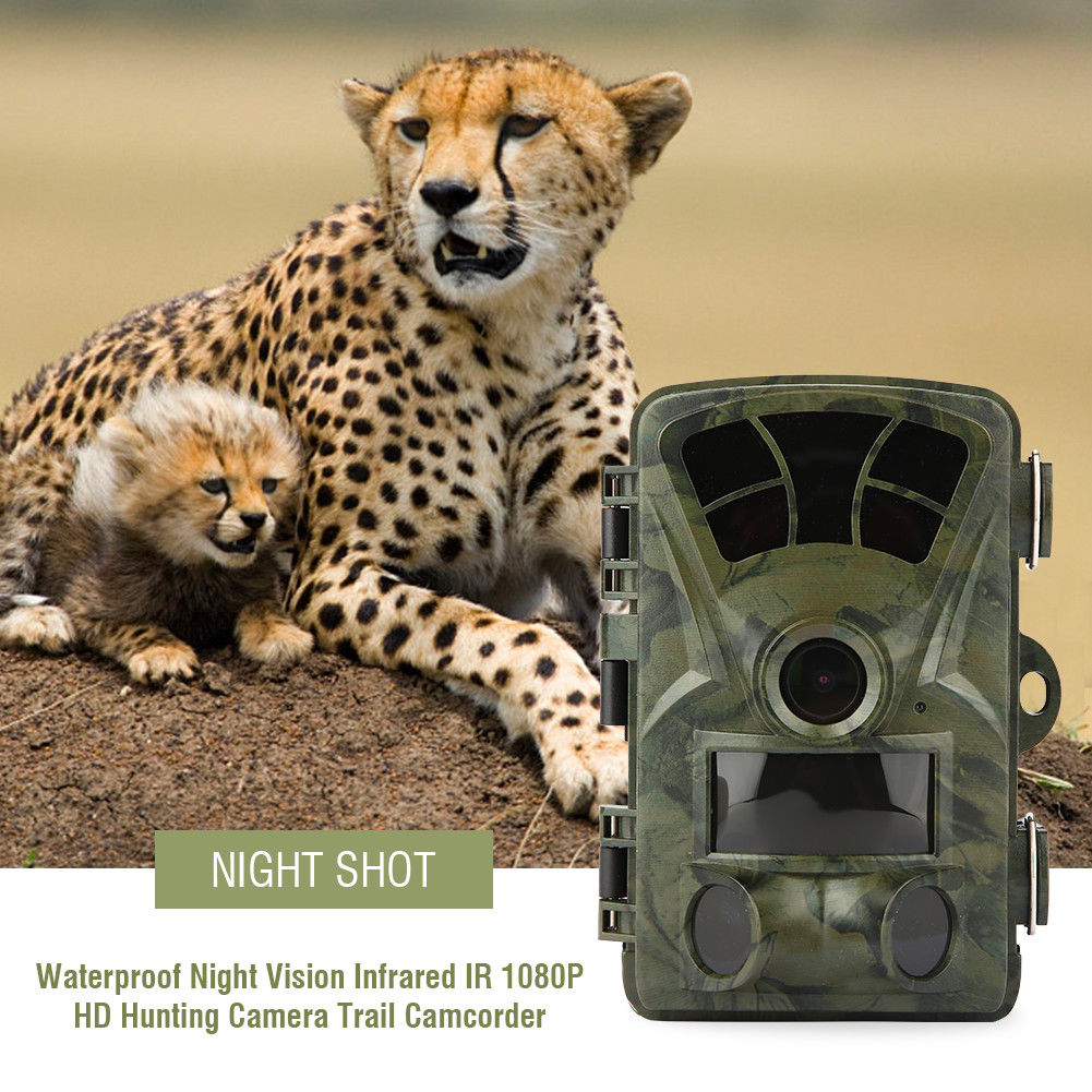 Hunting-Trail-Camera-HD-1080P-12MP-IR-Wildlife-Scouting-Cam-Night-Vision-6-Type thumbnail 17